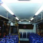 Buses & Ambulances 2