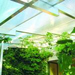 Translucent Light Roofs 3